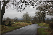 SJ8469 : Blackden Lane Siddington by Peter Turner