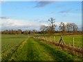 SU3095 : Farmland, Littleworth by Andrew Smith