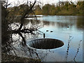 SJ5995 : Overflow, Newton Lake by David Dixon