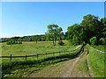 SU9398 : Track and pasture, Little Missenden by Andrew Smith