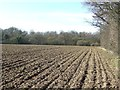 TL8636 : Ploughed Field by Keith Evans