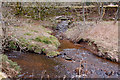 NT2158 : Confluence of the Cornton Burn and the North Esk by Jim Barton