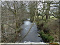 SK1686 : River Noe near Edale End by Andrew Hill