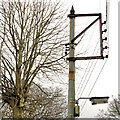 J4079 : Telegraph pole, Holywood by Albert Bridge