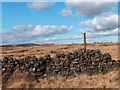 SK2576 : Old enclosure east of Froggatt Edge by Neil Theasby