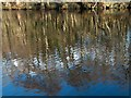 SK2475 : Rippling reflections in the River Derwent by Neil Theasby