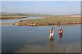 TV5197 : Drainage pools by the River Cuckmere by Oast House Archive