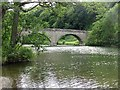 SO5074 : Dinham Bridge by Richard Webb
