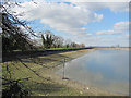 SP9113 : The South West Bank of Startops Reservoir at Low Water by Chris Reynolds