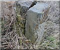 SE2710 : Benchmark on gate post High Hoyland by Alan Clark