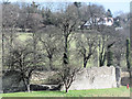 SP9908 : The Curtain Wall, Berkhamsted Castle by Chris Reynolds