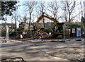 SJ9594 : Digging over the remains of Hyde Cemetery Chapel by Gerald England