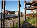 NT5585 : Coastal East Lothian : Rust Never Sleeps by Richard West