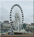 TQ3103 : The Brighton Wheel by JThomas