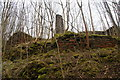 SK1771 : Former lime kiln above Upperdale by Bill Boaden