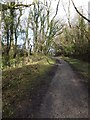 SX0872 : Camel Trail north of Shell Woods  by David Smith