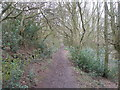 SE1326 : Footpath in Rookes Wood by John Slater
