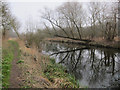 TL7986 : Path along Little Ouse by Hugh Venables