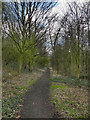 SD7209 : Path Alongside St Peter's Way by David Dixon