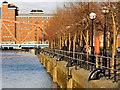 SJ8097 : Salford Quays, The Quays by David Dixon