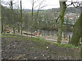 SJ9389 : Path by River Goyt by Peter Barr