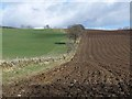 NO2255 : Wall and ploughed field at Little Kilry by Oliver Dixon