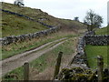 SK1177 : Pennine Bridleway leaving Hay Dale to the west by Andrew Hill