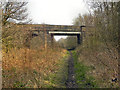 SJ7590 : Woodcote Road Bridge by David Dixon