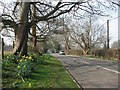 TL4346 : Thriplow: School Lane by John Sutton