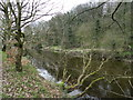 SJ9490 : River Goyt near Lower Dale Farm by Peter Barr