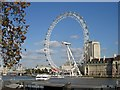 TQ3079 : The London Eye by Eric Lyus