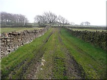 SE0021 : Footpath from Lark Hall to New Road by Humphrey Bolton