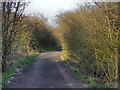 SJ6199 : Course of Disused Railway by David Dixon