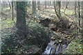 SK9530 : Stream in Bassingthorpe New Plantation by J.Hannan-Briggs