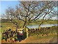 SD6610 : Access Gate, High Rid Reservoir by David Dixon