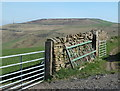 SK1881 : Wall and gates by Brough Lane by Andrew Hill