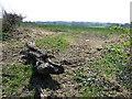 TL0618 : Fields by Tipple Hill Lane by Rob Farrow