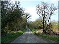 TL0517 : Millfield Lane looking in direction of Millfield Farm by Rob Farrow