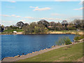 SJ8291 : Chorlton Water Park by David Dixon