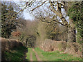 SO7394 : Bridleway to Bromley near Bridgnorth, Shropshire by Roger  Kidd