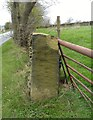 SE2506 : Gatepost with benchmark by Alan Clark