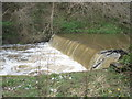 SE6795 : River  Dove  in  spate  at  the  weir by Martin Dawes