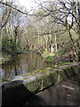 SK3189 : River Loxley at Wisewood by Rudi Winter