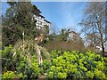 TQ8110 : Plants in Alexandra Park by Oast House Archive