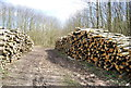 TQ5655 : Logs piled up by the path by Nigel Chadwick