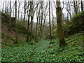 SK2556 : Side valley, Hopton Wood by Andrew Hill