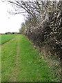 TL2038 : Footpath along the field edge by Philip Jeffrey