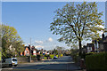 SD7001 : Hough Lane by Ian Greig