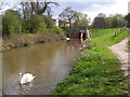 SK3973 : Chesterfield Canal below Newbridge Lane by Martin Speck