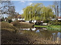 SU6948 : Village Pond, Upton Grey by Colin Smith